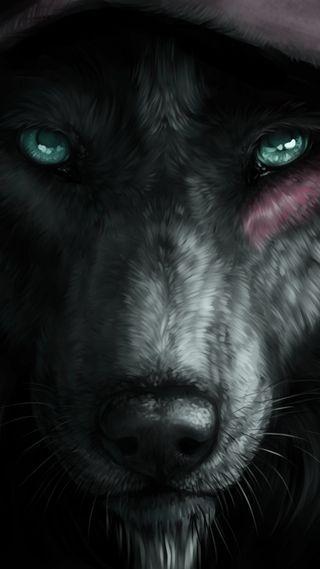 Обои на телефон глаза, черные, волк