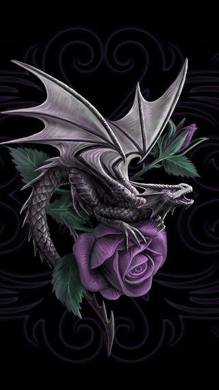 Обои на телефон красота, дракон, dragon