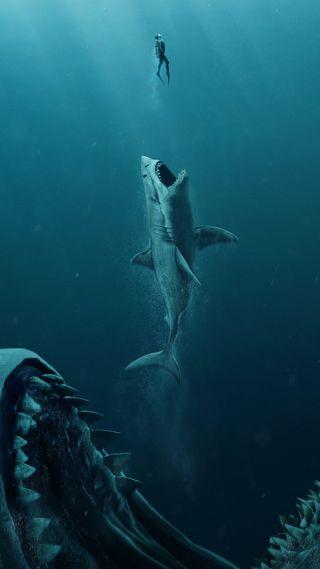 Обои на телефон море, дельфины, акула, the meg 2018 4k, creatures
