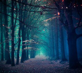 Обои на телефон зима, лес