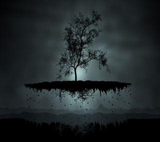 Обои на телефон растения, темные, земля, дерево