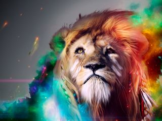 Обои на телефон лев, красочные, абстрактные