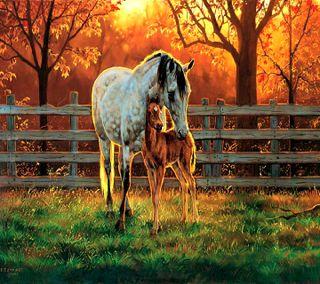 Обои на телефон лошадь, ------------