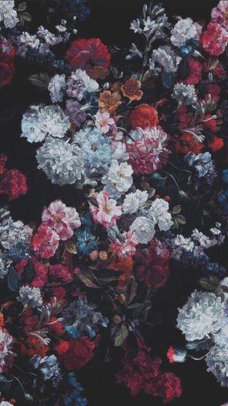 Обои на телефон цветы, цветные, розы, красые, кораллы, виноград, брызги, белые, tumblr, grape, color rose