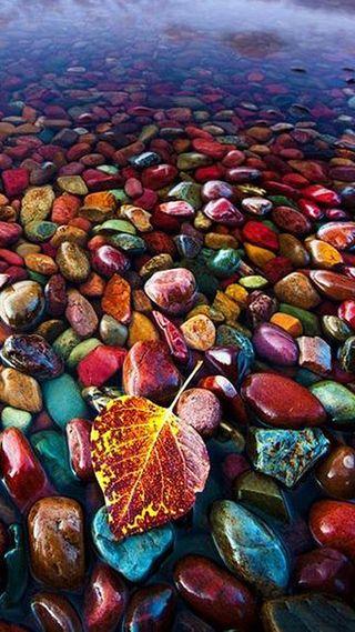Обои на телефон камни, цветные, синие, листья, красые, зеленые, желтые, вода