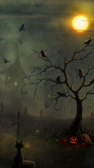 Обои на телефон тыква, хэллоуин, темные, ночь, луна