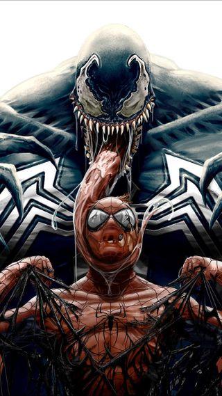 Обои на телефон паук, веном, spider man