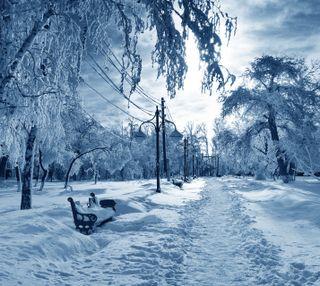 Обои на телефон путь, снег, скамейка, парк, зима, декабрь, белые