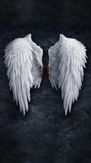 Обои на телефон крылья, сломанный, белые, ангел, white wings, pair, angel wings