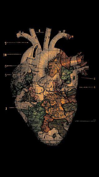 Обои на телефон змея, череп, хипстер, фильмы, токсик, сердце, розы, поездка, мир, heart of the world