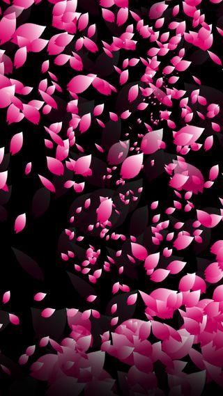 Обои на телефон лепестки, черные, розовые, petal
