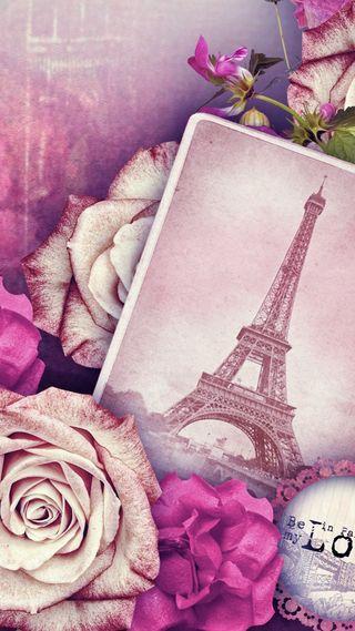 Обои на телефон париж, цветы, розы, розовые, башня