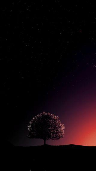 Обои на телефон одиночество, дерево, solitude