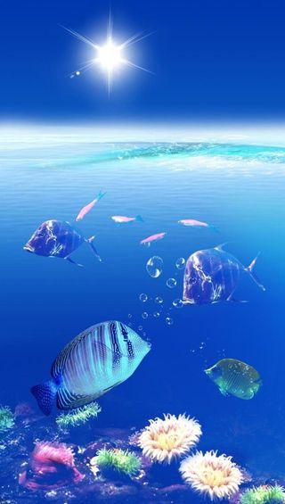 Обои на телефон подводные, солнце, жизнь, underwater hd