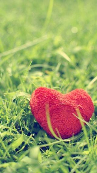 Обои на телефон макро, сердце, любовь, красые, love, cuore, amore