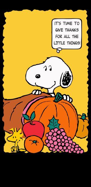 Обои на телефон тыква, эпл, снупи, осень, оранжевые, виноград, благодарность, благодарение, woodstock, cornucopia, beagle thanks, apple
