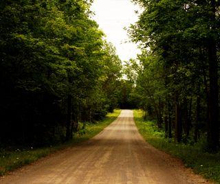 Обои на телефон страна, свет, путь, маршрут, зеленые, дорога, деревья, дерево, rural route
