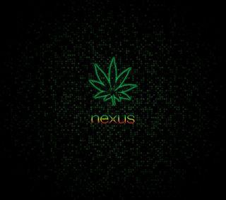 Обои на телефон раста, любовь, зеленые, гугл, андроид, weeds, rasta nexus hd, nexus 4, nexus, n4, love, lg, google, android