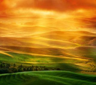 Обои на телефон холм, трава, смысл, поле, sense field, one, htc