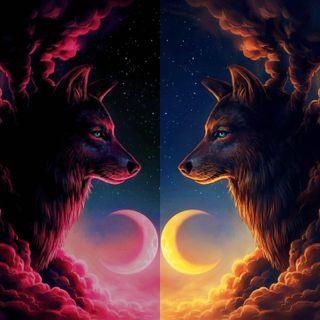 Обои на телефон стена, луна, волк, wolf wall 6