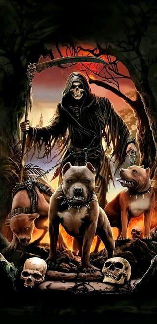 Обои на телефон собаки, мрачные, жнец, pitball, hell hounds, hell