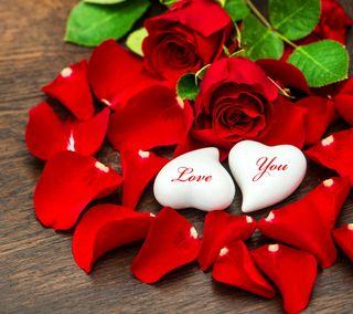 Обои на телефон love, любовь, красые, сердце, розы, романтика, лепестки