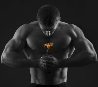 Обои на телефон спортзал, цветы, фитнес, тело, сильный, мужчина, железный, арт, the flower, pumping, muscles, fit, art