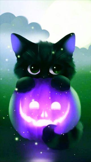 Обои на телефон тыква, фиолетовые, мир, purple pumpkin