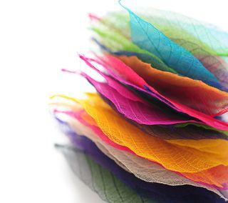 Обои на телефон рокки, радуга, природа, милые, любовь, крутые, андроид, абстрактные, rainbow hd, love, android, 2012