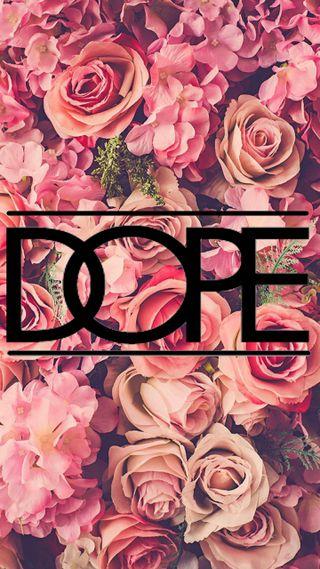 Обои на телефон розы, dope roses, dope