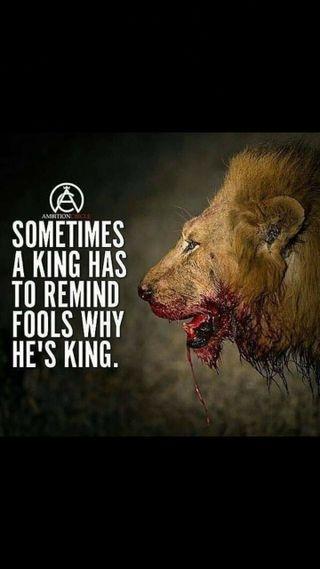 Обои на телефон отношение, лев, король, swag, lion-attitude