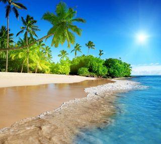 Обои на телефон каникулы, пляж, пальмы, океан, море