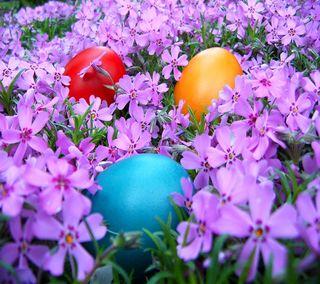 Обои на телефон яйца, пасхальные, цветы, цветные, фиолетовые, праздник, весна