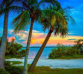 Обои на телефон изображение, супер, приятные, закат, взгляд, super sunset image