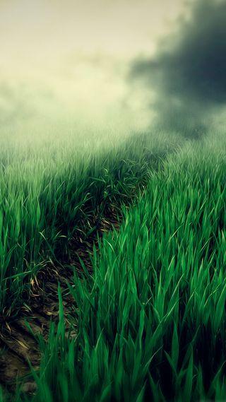 Обои на телефон трава, рисунки, природа