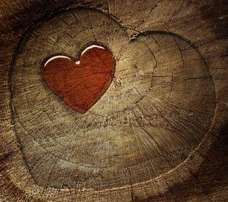 Обои на телефон любовники, сердце, любовь, лес, дизайн, love