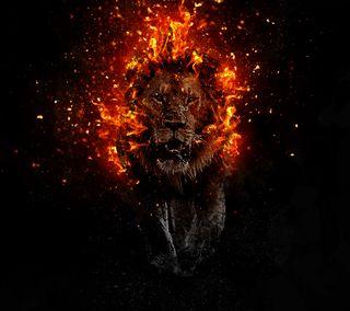 Обои на телефон взрыв, огонь, лев, лава, lava lion