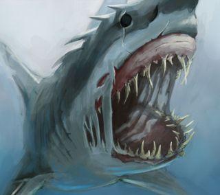 Обои на телефон опасный, кит, акула