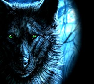 Обои на телефон волк, ------------
