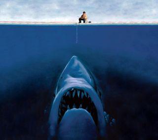 Обои на телефон акула