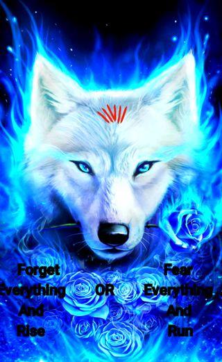 Обои на телефон волк, вдохновляющие, pcs, inspirational wolf