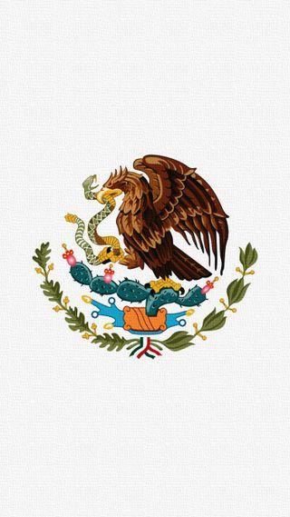 Обои на телефон мексика, флаг, mx, mexico flag, 001