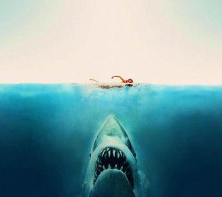 Обои на телефон jaws, природа, крутые, акула