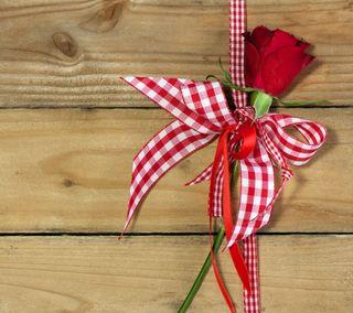 Обои на телефон лук, цветы, романтика, розы, дерево