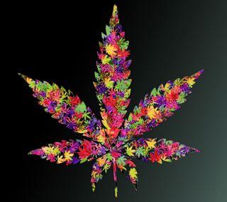Обои на телефон листья, дым, цветные, красочные