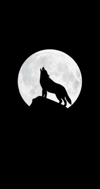 Обои на телефон силуэт, черные, луна, горы, волк, вой, белые, howling