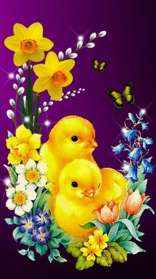 Обои на телефон пасхальные, счастливые, весна, 720x1280px