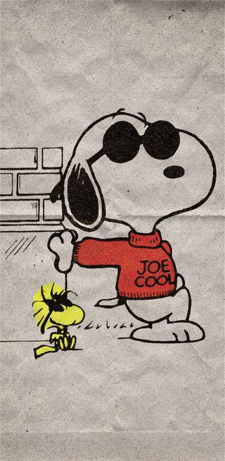 Обои на телефон joe cool, peanuts, sunday funnies, woodstock, wraithdude, крутые, мультфильмы, коричневые, вечеринка, снупи, солнечные очки