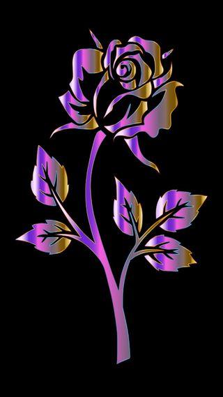 Обои на телефон сад, цветочные, розы, градиент