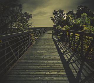 Обои на телефон a walk alone, темные, деревья, одиночество, мост, прогулка